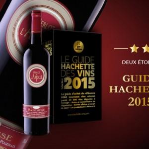 Synthèse 2012 : velours et onctuosité du merlot. La Synthèse est un vin 2 en 1, deux récoltes en un seul vin, ce qui lui donne son caractère.