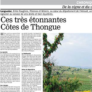 Article Côtes de Thongue - La Marseillaise